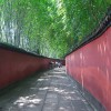 中国 / 成都旅行記