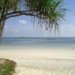 インドネシア / ビンタン島旅行記
