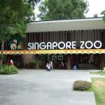 シンガポール動物園旅行記